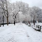 Snowy Riverside Drive