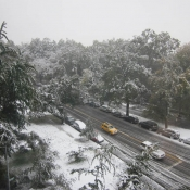 October Snow from 5th Floor (2011)